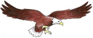 Immanuel Luthern School Front Page Eagle